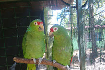 Costa Rica Animal Rescue Center, Turrucares, Costa Rica