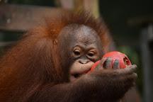 Matang Wildlife Centre, Kuching, Malaysia