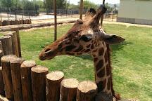 Wildlife World Zoo and Aquarium, Litchfield Park, United States