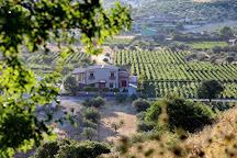 Ktima Bairaktaris, Nemea, Greece