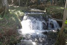Termales Agua hermosa, San Carlos, Costa Rica