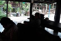 Taweechai Elephant Camp, Kanchanaburi, Thailand