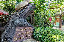Butterfly Park & Insect Kingdom, Sentosa Island, Singapore