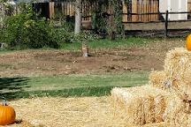 Summers Past Farms, El Cajon, United States