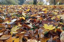 Gleniffer Braes Country Park, Paisley, United Kingdom