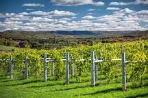 Petoskey Farms Vineyard & Winery, Petoskey, United States