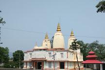 Laxmi Narayan Mandir, Bilaspur, India