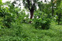Dumna Nature Reserve, Jabalpur, India