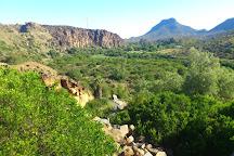 Camdeboo National Park, Graaff-Reinet, South Africa