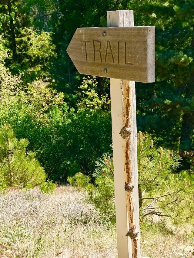 Will Abell Memorial Trail at Arrowhead Ridge