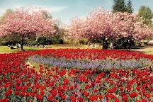 Alexandra gardens, Cardiff, United Kingdom