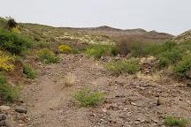 Black Hills Rockhound Area, Safford, United States