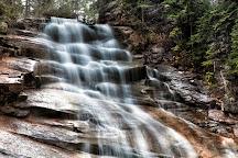 Ripley Falls, Bartlett, United States