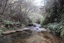 Wentworth Falls Lake, Wentworth Falls, Australia