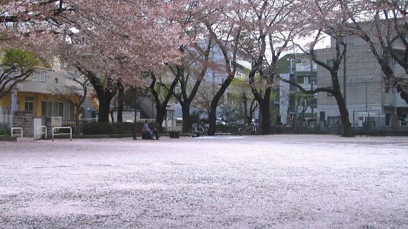 松が枝公園