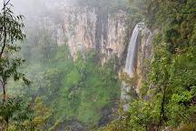 Purling Brook Falls, Springbrook, Australia