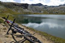 Parco Regionale del Mont Avic, Aosta, Italy