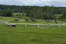 Valery Trails & Horse Riding Centre, Bellingen, Australia