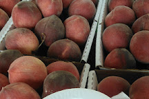 Johnson's Peaches, Candor, United States