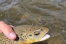 Mt. Shavano Fish Hatchery, Salida, United States
