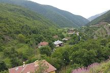 Akgol, Ayancik, Turkey