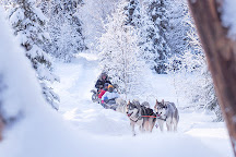 One Day in Lapland, Rovaniemi, Finland