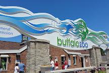 The Buffalo Zoo, Buffalo, United States