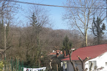 Belgrad Forest, Istanbul, Turkey