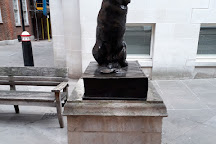 Hodge the Cat, London, United Kingdom