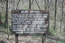 Blue Spring, Eminence, United States