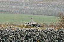 Heart of Burren Walks, Carran, Ireland