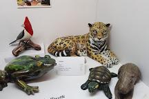 Museo de arte Tigre, Tigre, Argentina