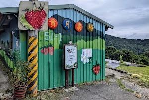 貴月農場無毒草莓園