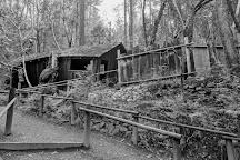 Oregon Vortex, Gold Hill, United States