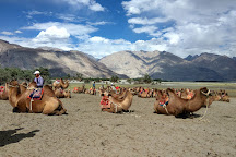 Hunder Sand Dunes, Hunder, India