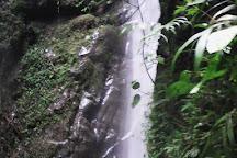 Sendero Ecologico Las Brumas, Calima, Colombia