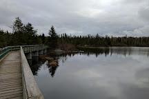 Hazelwood Lake Conservation Area, Thunder Bay, Canada