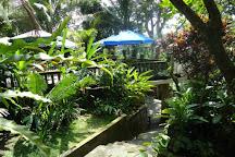 True Bali Experience, Carangsari, Indonesia