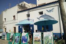 Wildwatch Algarve, Ferragudo, Portugal