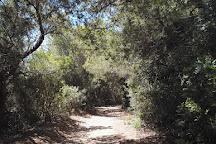 Cala Escorxada, Migjorn Gran, Spain
