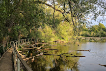 Mac Johnson Wildlife Area, Brockville, Canada