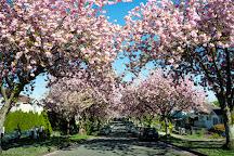 Falaise Park, Vancouver Island, Canada