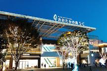 Nagareyama Otakanomori SC, Nagareyama, Japan