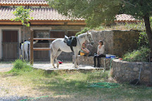Odysseia Stables, Avdou, Greece