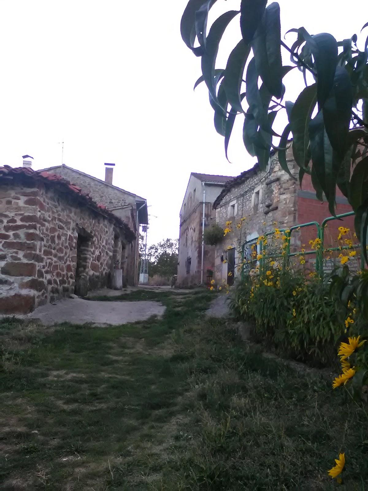 Arroyo de Salas