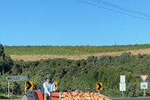 Home Hill Winery, Ranelagh, Australia
