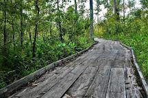 Bayou Segnette State Park, Westwego, United States