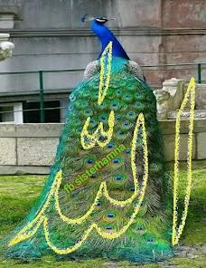 Golden Ground Park karachi