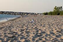 Van's Beach, Leland, United States