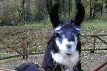Ferme aux Lamas du Doubs, Mamirolle, France